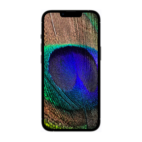 iphone-13 copy