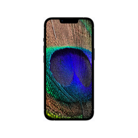 iphone-13-min2i