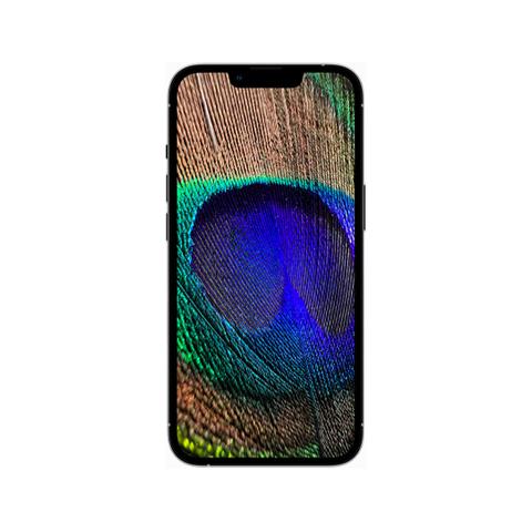 iphone-13pro2