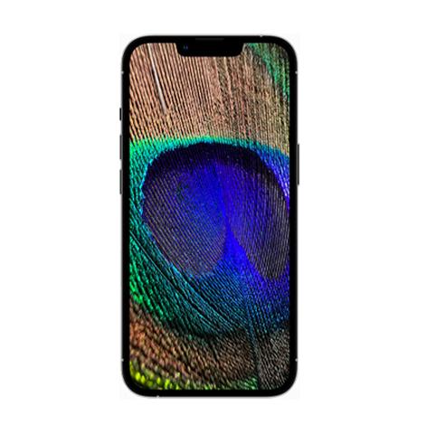 iphone-13promax2